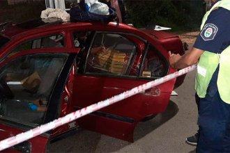 Gracias a la perra Lola, interceptaron un auto que ingresaba a Entre Ríos con más de 50 kilos de droga