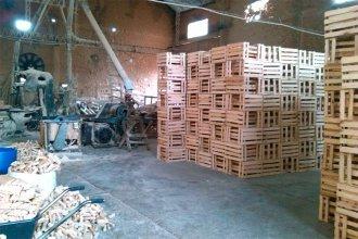 Secretaría de Trabajo obliga a parar a los aserraderos que fabrican los cajones para el citrus