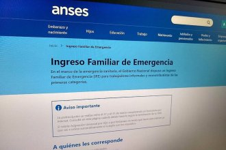 """Aseguran que el segundo pago del Ingreso Familiar de Emergencia será """"un refuerzo"""""""