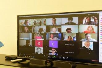 Encuentro virtual: Las reuniones de comisión de diputados se adaptan a la cuarentena