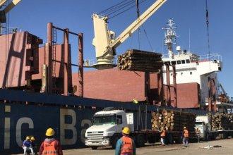 Con estrictas normas sanitarias, se completa la carga de madera de pino con destino a China