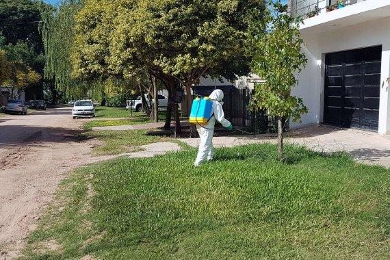 Dengue en Colón: Seis casos confirmados y otros tres resultados en espera