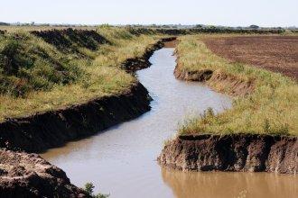 Suspensión preventiva: detienen la construcción de terraplén en un área natural protegida