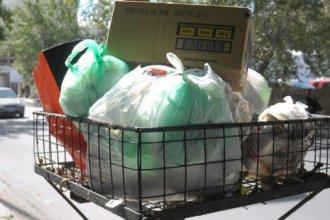 Piden recaudo a los vecinos: un recolector se lastimó con una jeringa que estaba en una bolsa de residuos