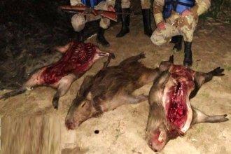 Santafesinos rompieron la cuarentena y fueron atrapados cazando carpinchos en isla entrerriana