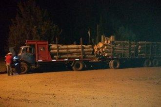 Sustrajeron madera de un monte sin el permiso del dueño del campo: la carga se dirigía a Concordia