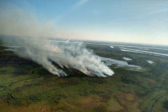 """Desde Rosario juntan firmas para decir """"basta a las quemas ilegales"""" en la zona del Delta entrerriano"""