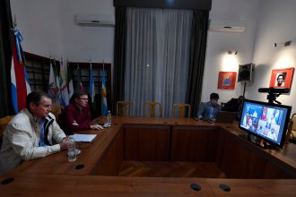 Incendios en el Delta: Bordet tuvo una reunión por videoconferencia con Perotti y Cabandié