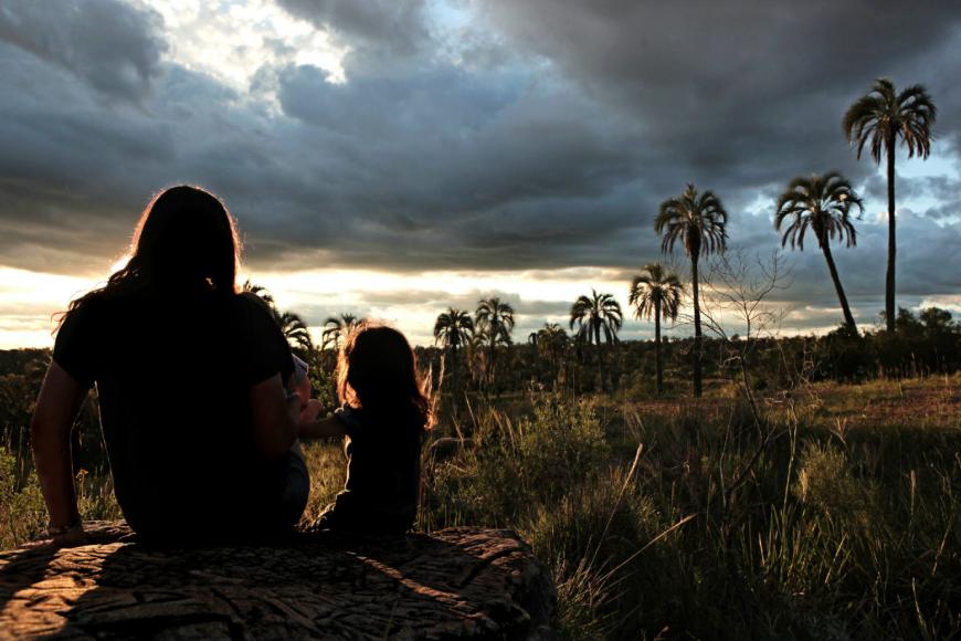 El Palmar, ejemplo del ecoturismo que se viene.