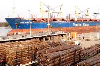Entre Ríos tiene nuevo comprador para su madera y ya puso fecha para el primer embarque