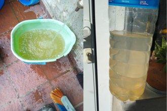"""""""La turbiedad no quiere decir que el agua no sea potable"""", dicen desde Obras Sanitarias ante la preocupación de vecinos"""