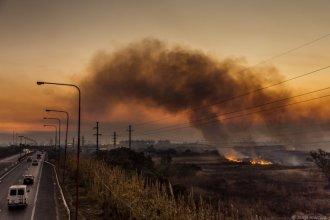 En lo que va del año, detectaron casi 40 mil focos de incendios en el Delta del Paraná
