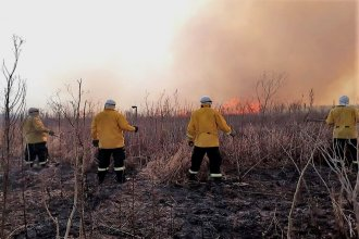 Desde Agmer exigen un rápido accionar judicial para determinar quiénes son responsables de los incendios en el Delta