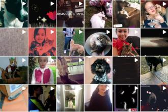 """Estos son los ganadores de """"Tu mascota es una estrella"""", concurso de videos propuesto desde el Museo de Salto Grande"""
