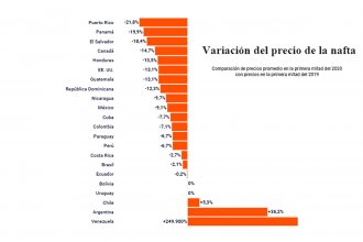 ¿Cuántos litros de nafta se pueden comprar con un salario promedio en Argentina y en el mundo?