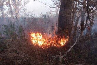 Prefectura identificó a 7 sospechosos por los incendios en las islas del Delta
