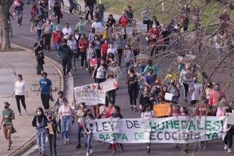 Movilización masiva en la capital entrerriana: exigieron que frenen los incendios en el Delta