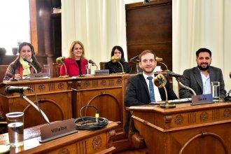 Sistema de video vigilancia: con un listado de 24 puntos, concejales piden información al Municipio