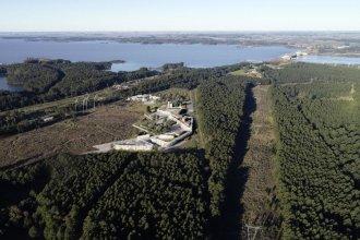 Niez opinó sobre el Distrito Tecnológico Salto Grande, próximo a su lanzamiento