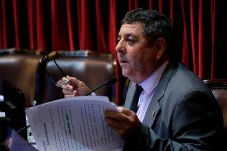 Clima caliente en el Senado: De Angeli reaccionó contra una decisión del oficialismo y Mayans lo cruzó