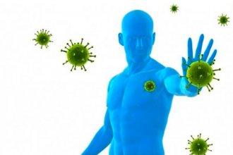 """Cada persona, un """"mundo"""" inmunológico: ¿Por qué el virus se ensaña con algunos mientras otros ni se enteran de que están contagiados?"""
