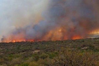 Un importante incendio afectó 150 hectáreas de bosque nativo en una zona de Gualeguaychú