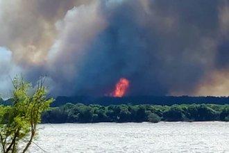 En imágenes, el incendio forestal visto desde Uruguay