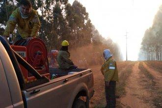 Fuego extinguido: intensa labor, los peritajes y reconocimiento a los bomberos