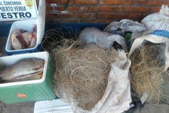 En un camping de la costa del río Uruguay, secuestraron animales faenados y pescados