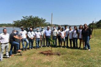 Para reforestar la costa del río Uruguay, CARU donó diversas especies de árboles autóctonos