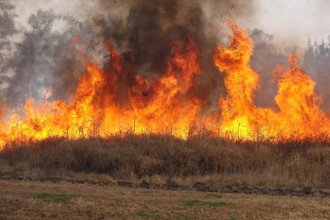 """Para """"prevenir incendios y daños ambientales"""", proponen regular las quemas en San José"""
