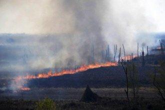 Con el aporte de fotos satelitales, Cabandié solicitó formalmente a la Justicia de Victoria que investigue los nuevos incendios