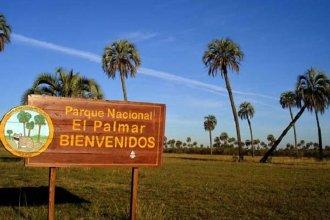 Vuelven las visitas a El Palmar: ¿Cuáles son las condiciones de ingreso en esta primera fase de reapertura?