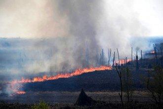 Nueva batalla contra el fuego en el Delta entrerriano