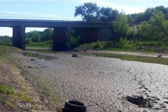 Aprovechando la bajante del río, instituciones se unen para limpiar el cauce de un arroyo