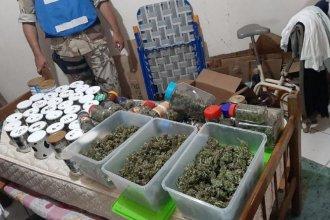Allanaron una vivienda por estafas, pero encontraron más de un kilo y medio de marihuana