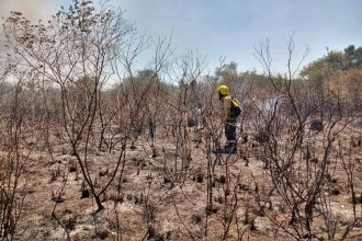 Bomberos trabajaron casi diez horas para controlar un incendio en la zona del aeropuerto de Concordia