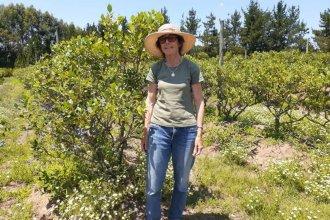 Graciela Taylor, la maestra que reparte su tiempo entre los limones, arándanos, duraznos, la nuez pecán y el Turismo Rural