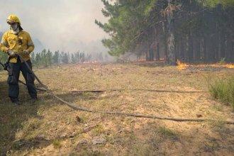 ¡Misión cumplida! Seis cuarteles de bomberos pudieron con el viento y el calor para sofocar incendio forestal