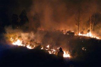 Bomberos combatieron un gran incendio a la vera de la autovía Artigas