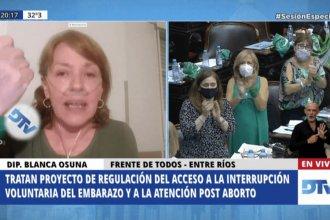 Por qué el voto de una diputada entrerriana atrajo la atención de los medios nacionales