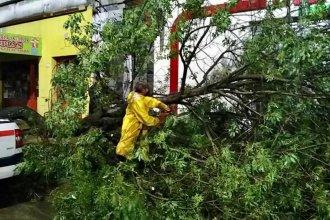 Fuerte temporal dejó sin techo a varios hogares y causó destrozos en ambas costas entrerrianas
