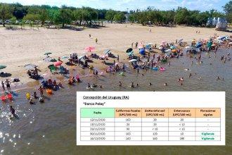 Las dudas y criterios sobre la medición de la contaminación de Banco Pelay en Concepción