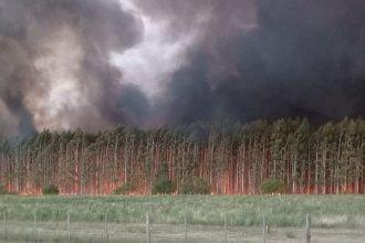 Con una veintena de hectáreas en llamas, piden refuerzos de cara a la madrugada
