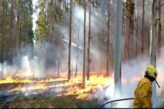 """Contenido, pero """"con peligro de propagación"""": continúa el trabajo de bomberos cerca de Colón"""