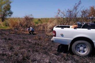 Buscan responsables de incendios forestales en la costa del Uruguay y podría haber duras sanciones