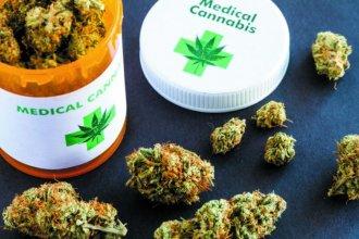 El cannabis medicinal tiene media sanción en Entre Ríos y pasa a Senadores