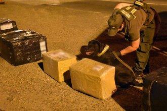 Descubrieron una encomienda con 19 kilos de droga en un control en Ruta 14