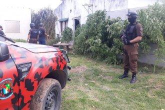 Realizaron allanamientos por narcomenudeo en Concepción y San José