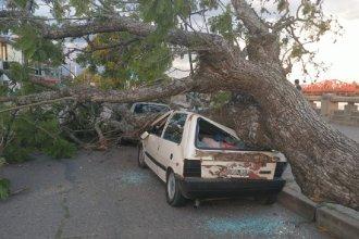 Fuerte temporal causó graves daños en Gualeguaychú y en un balneario aledaño